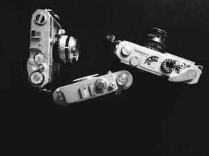 shoot-348