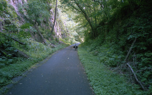 Western Maryland Rail Trail- this felt like cheating- smooth and fast